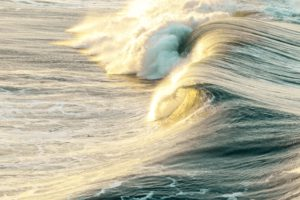 Surfing Toward a Brighter Future Featured Image